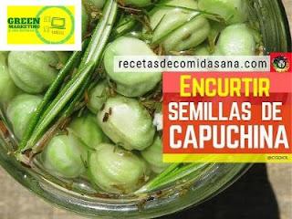 Recetas Comida Sana, plataforma de contenidos de ECO SEO Green Marketing
