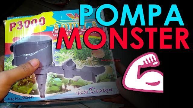 Review Pompa Celup Aquila P3000 Lebih Mirip Pompa Ledeng Ketimbang Pompa Aquarium