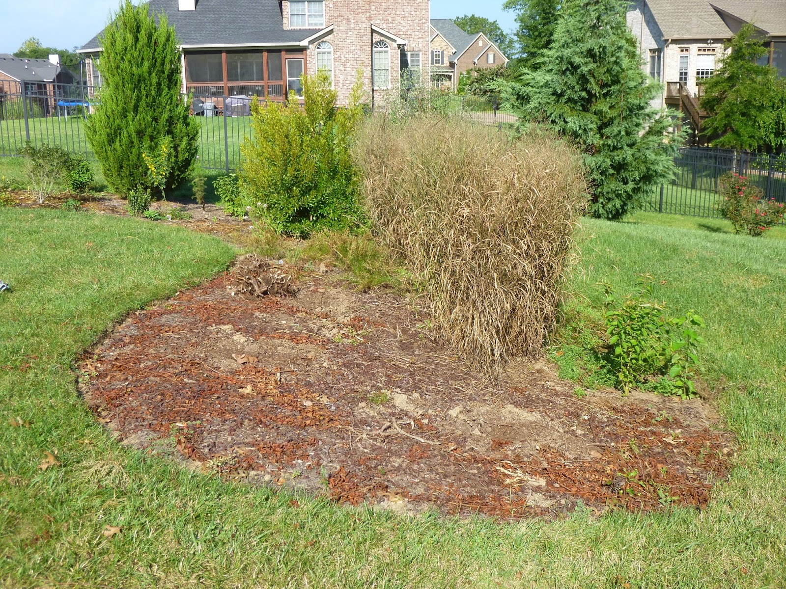 Garden of Aaron: Covering a Lot of Ground - A Long Ramble