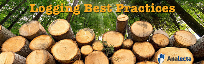 Logging best practices Analecta LLC