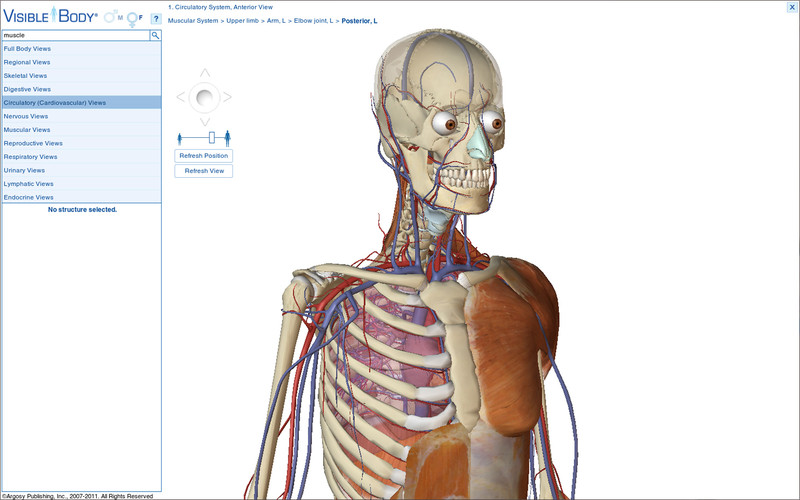VISIBLE BODY ANATOMY AND PHYSIOLOGY HACKED FULL SOFTWARE FREE DOWNLOAD