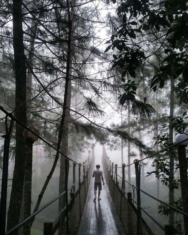 Percutian-Ke-Sabah-Blog-Kundasang-0-1-1