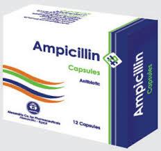 Resep Obat Sipilis Antibiotik Pria Dan Wanita