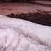 Waw, 5 Penemuan Mahluk Misterius Di Pantai Ini Bikin Geger Dunia