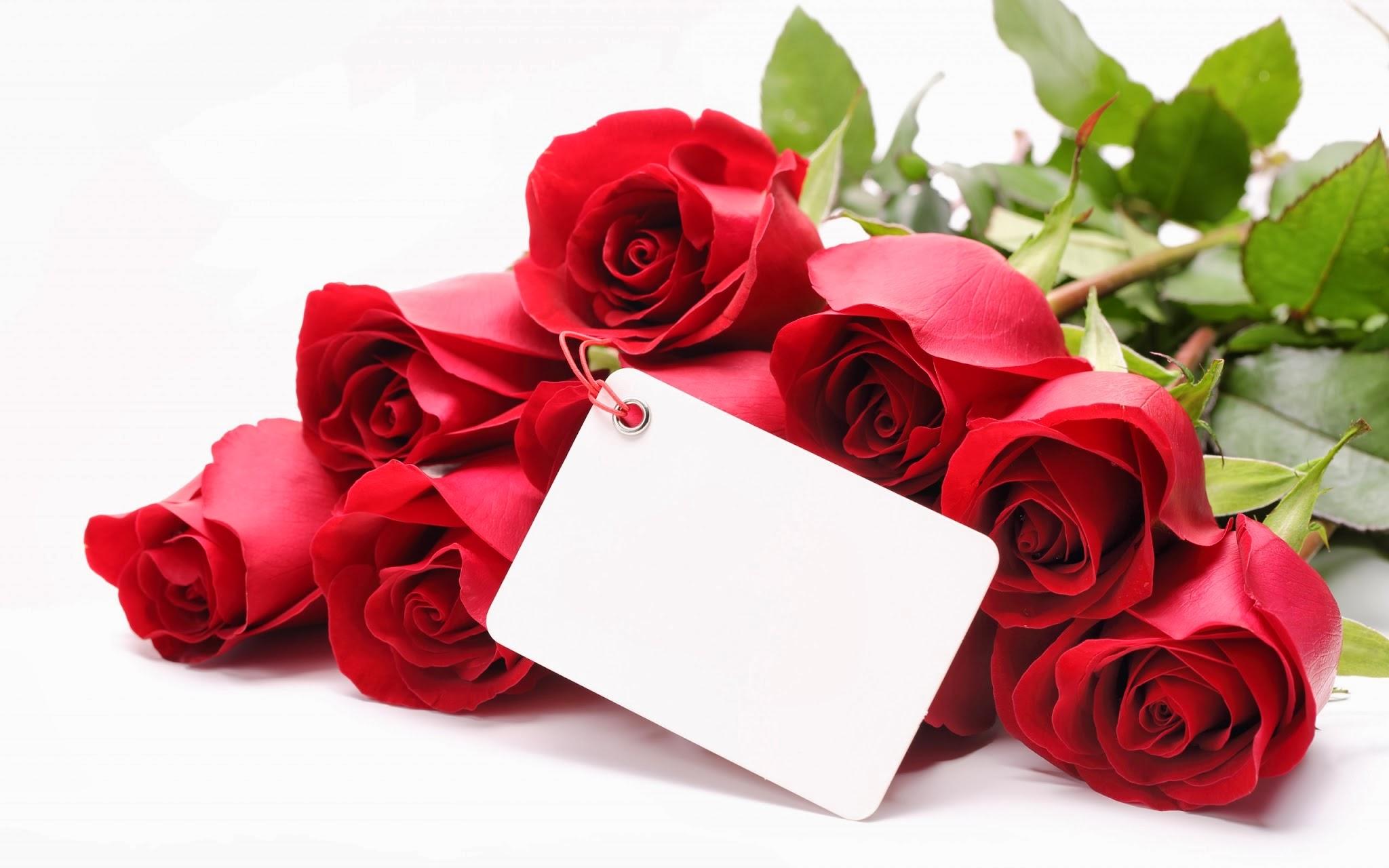 Ramo De Flores Imagenes - 7 imagenes de regalos de rosas rojas y frases tiernas para