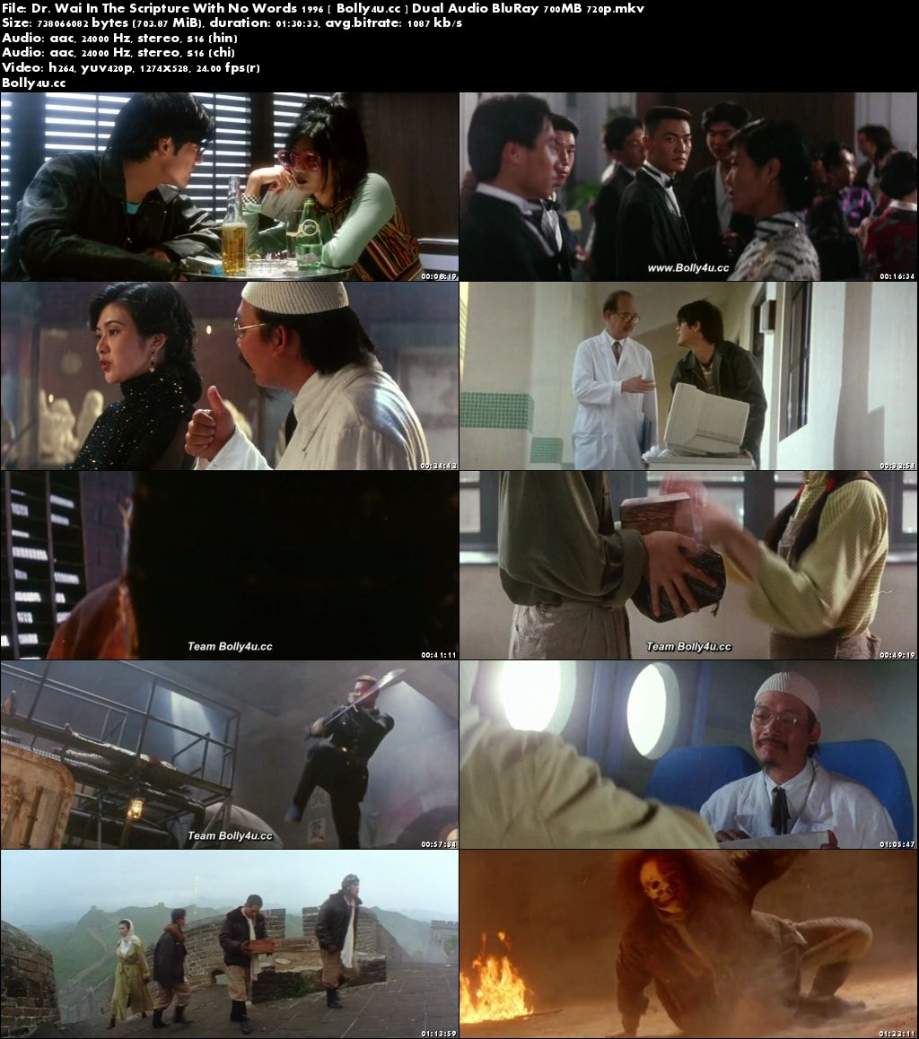 Dr Wai In The Scripture With No Words 1996 BluRay 700MB Hindi Dual Audio 720p Download