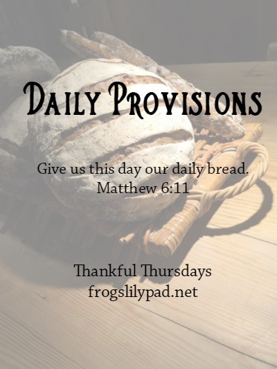 Daily Provisions {Thankful Thursdays}