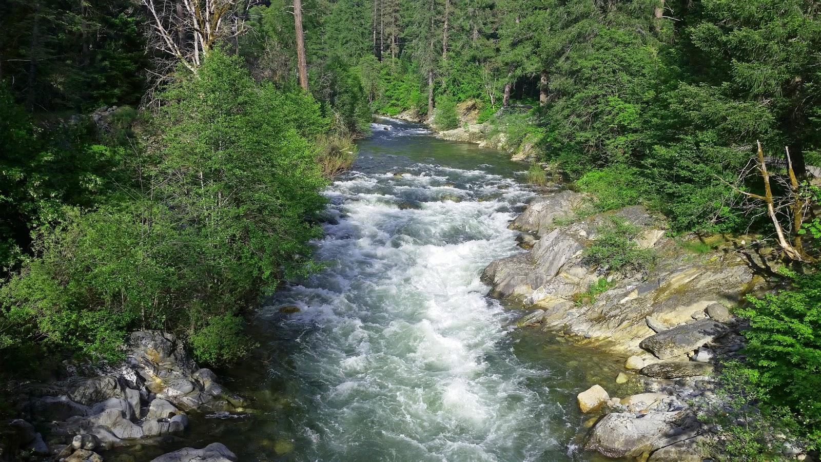 Jon baiocchi fly fishing news lake davis fishing report 5 for Feather river fishing