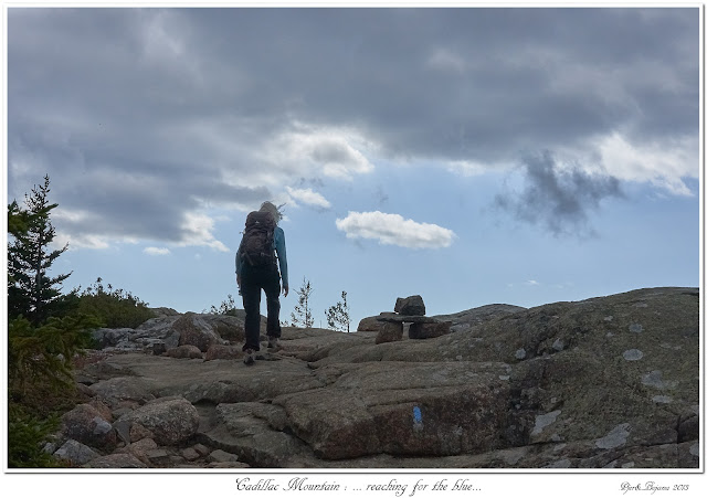 Cadillac Mountain: ... reaching for the blue...