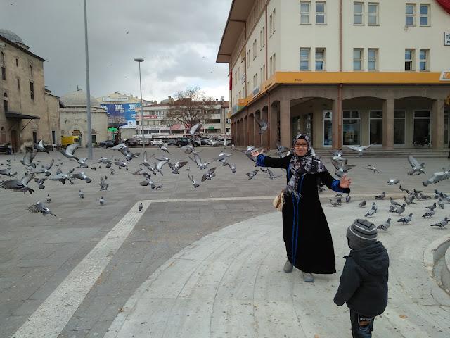 Main Bersama Anak di Turki Main Kejar-kejaran Bersama Burung Merpati