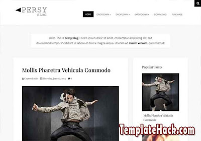 persy responsive blogger template