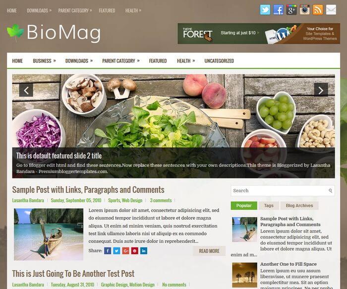 BioMag Blogger Template