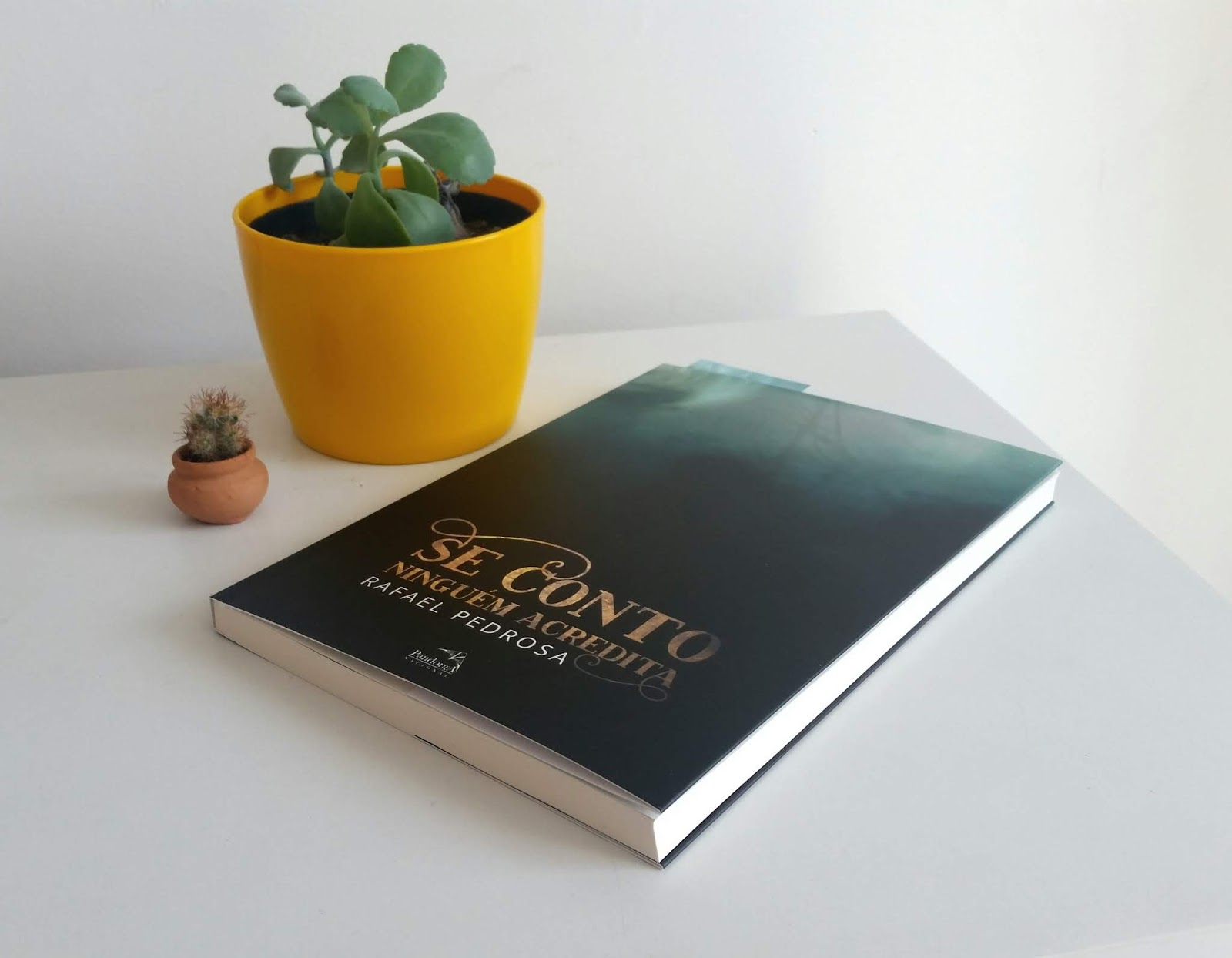 Rafael Pedrosa e o livro