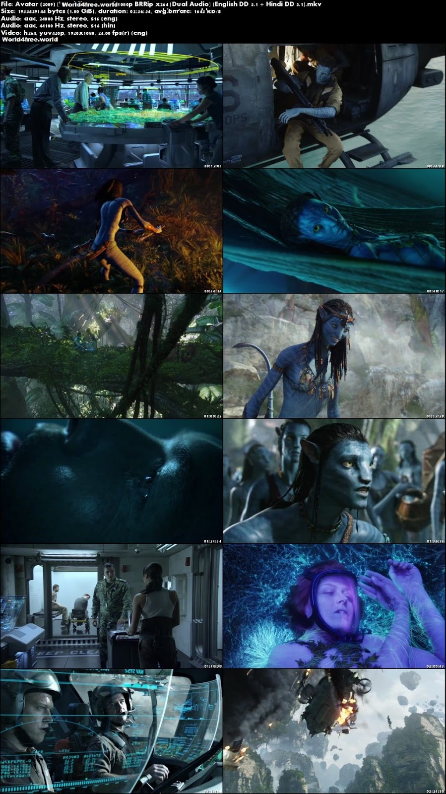 Screen Shoot Of Avatar Extended Collectors Edition 2009 Dual Audio Hindi 720p BRRip