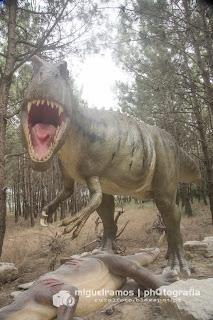 dinossaurus