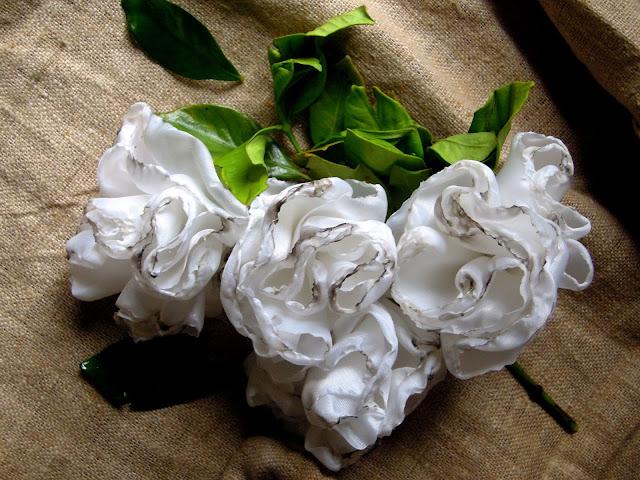 Rosas impostoras