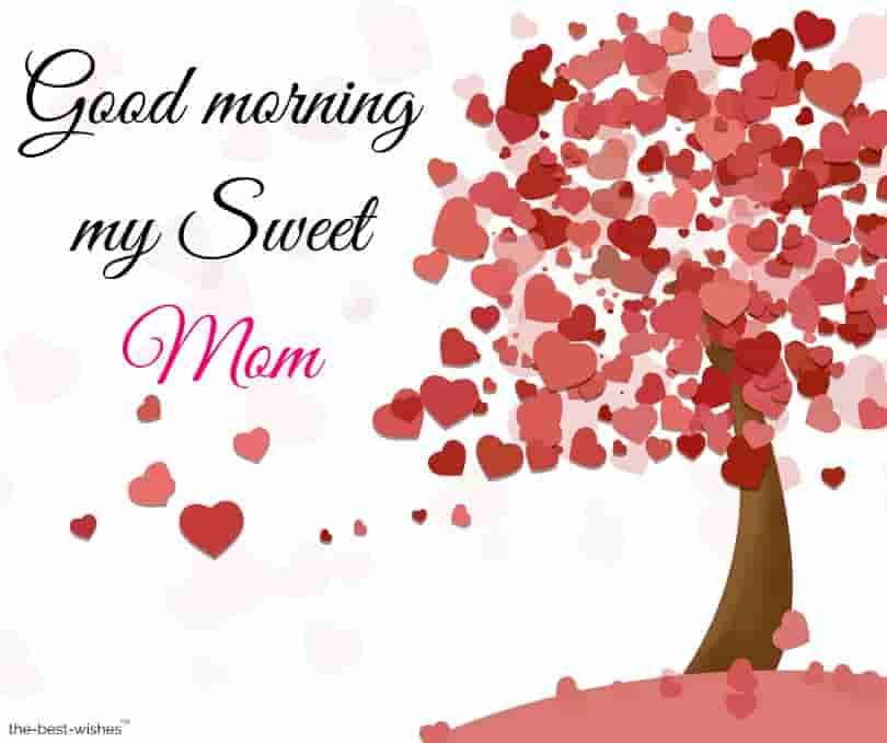 good morning my sweet mom