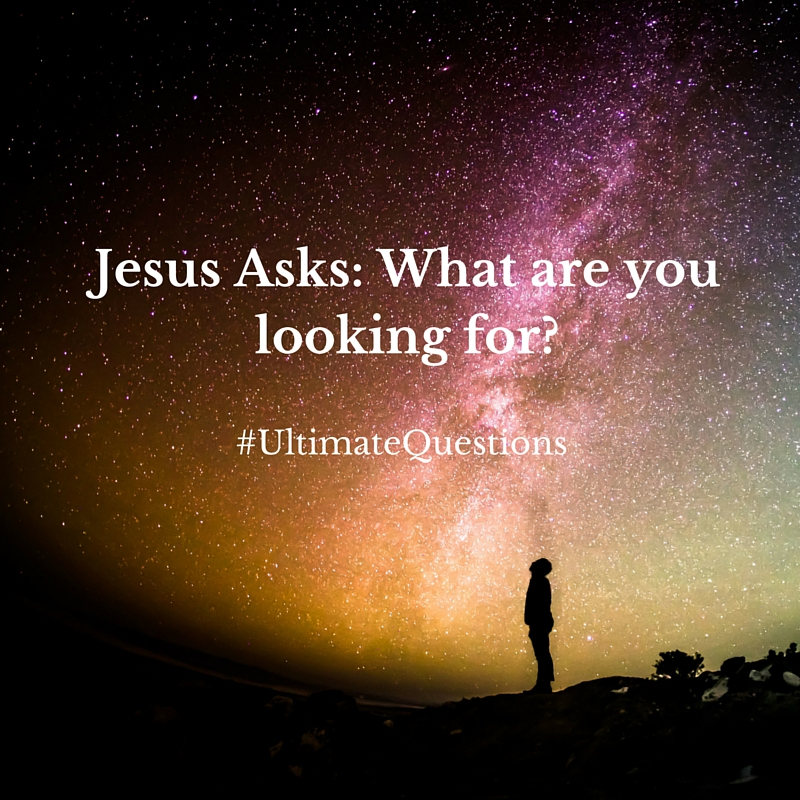 a72ab7e3798a Behold   Reflect  Jesus Asks  What are you looking for