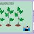 Sistem Fertigasi Terbaik untuk Kebun Tin