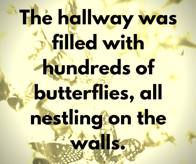 The hallway was filled with hundreds of butterflies, all nestling on the walls.