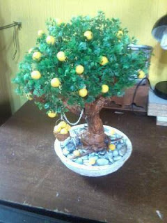 vendo Bonsai para decorar casa