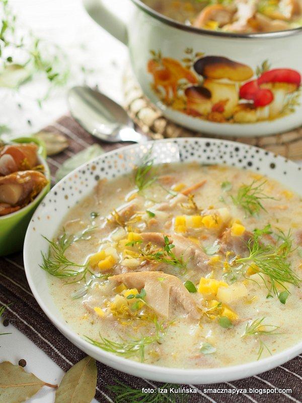 zupa z kiszonych plachetek, kiszone grzyby, zupy domowe, domowy obiad, zupa grzybowa