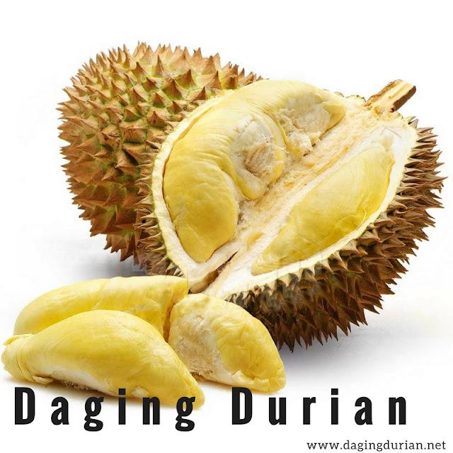 distributor-daging-durian-medan-terharum-di-aceh-jaya