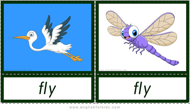 Verb fly (dragonfly and bird flying) - printable animal actions flashcards for English learners