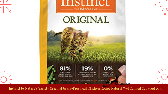 Instinct by Nature's Variety Original Grain-Free Real Chicken Recipe Natural Wet Canned Cat Food.