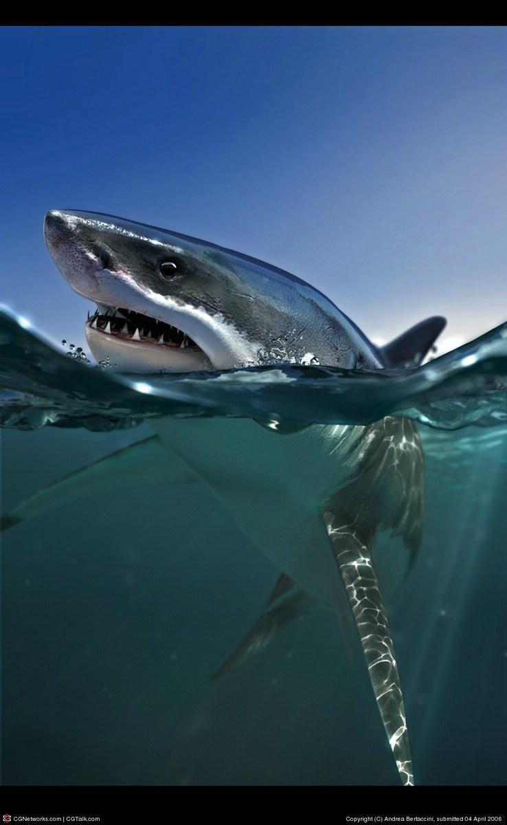 Modelo 3D Tiburón