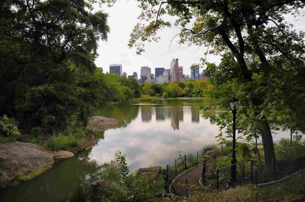 central-park-lake-scratchbook