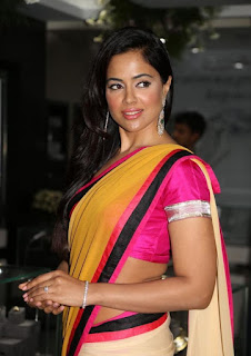 south actress Sameera Reddy saree pics