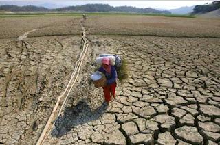 Beberapa Wilayah Indonesia Dilanda Bencana Kekeringan