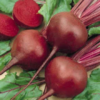 khasiat buah bit beetroot www.kiatjitu.com