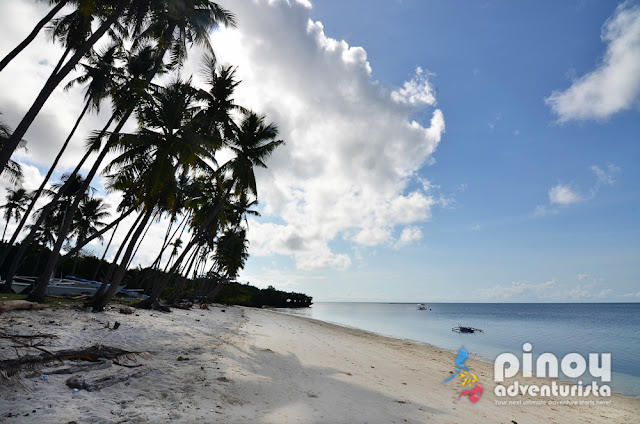 Beautiful Beaches in Siquijor