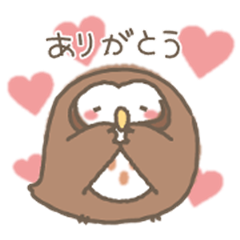 Loose owl of Sunvalley Nasu