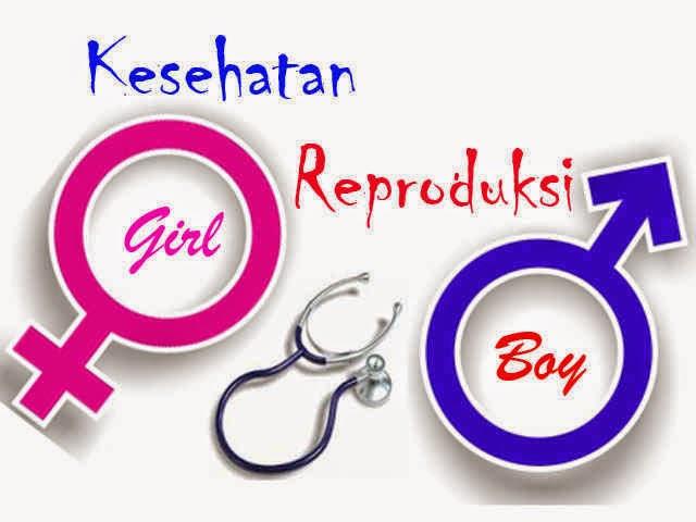 sistem reproduksi manusia. www.blogsoaljawaban.blogspot.com