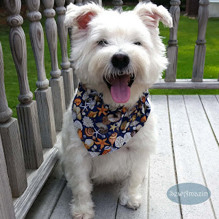 Seashore Treasures Beachy Dog Bandana | SewAmazin