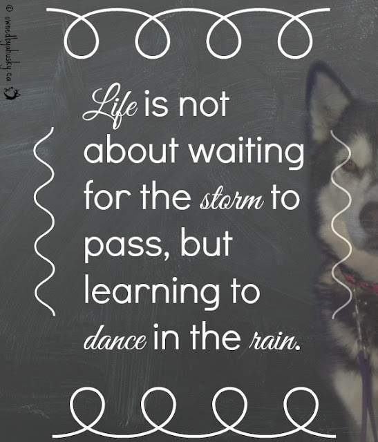 Life Is Not About Waiting quote
