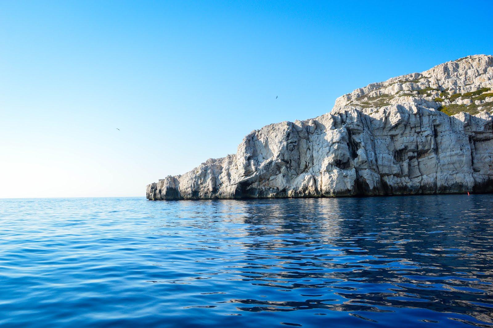 la fiancée de l'arbre lafianceedelarbre marseille une matinée en mer