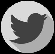 twitter whiteout icon