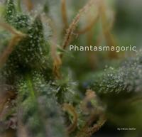 Phantasmagoric by Ethan Steller