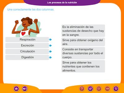 http://ceiploreto.es/sugerencias/juegos_educativos_6/1/3_Procesos_nutricion/index.html