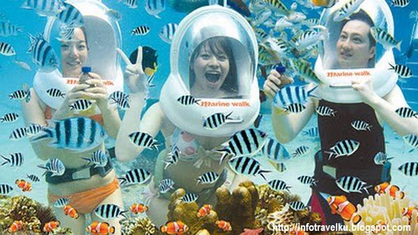 Melihat Indahnya Wisata Bawah Laut Pulau Bali Info Travel
