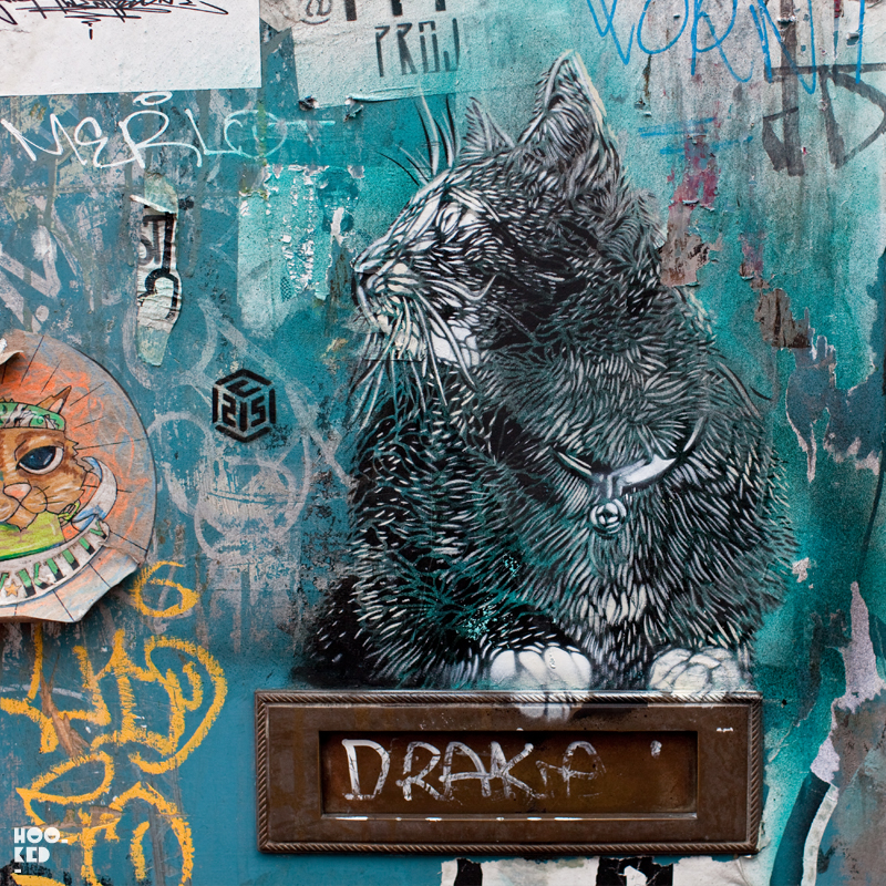 C215 - London Street Art Clowder of Cats