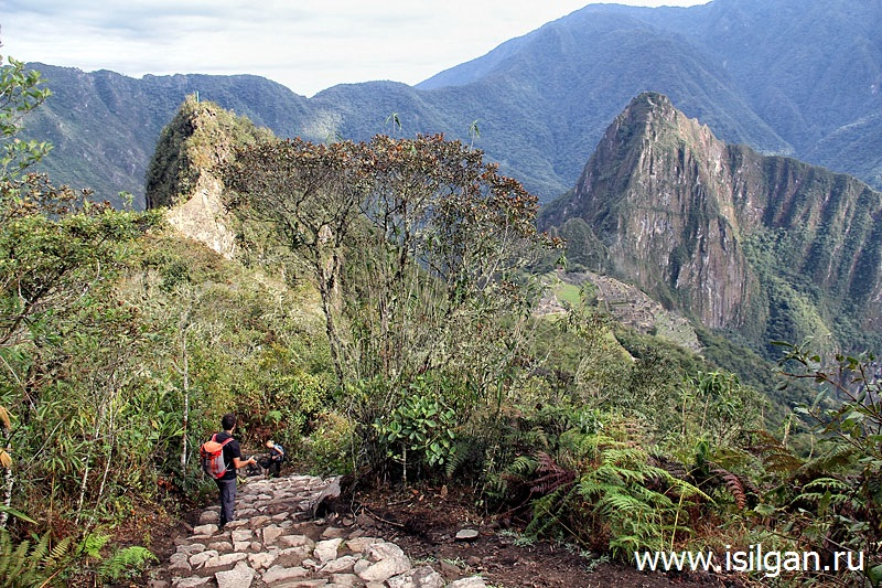 Древний город инков Мачу-Пикчу. Гора Мачу-Пикчу (3061). Перу