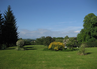 Trees and blooming gorse on the front lawn, Mabie House, Mabie Forest, Scotland
