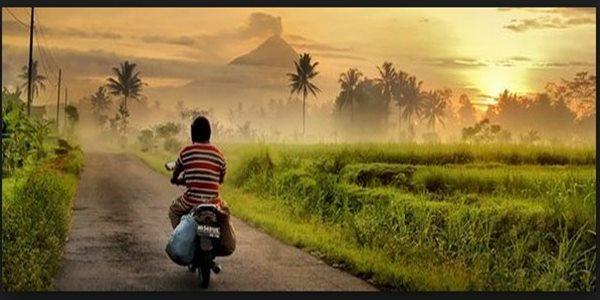 Usaha Paling Laris Di Kampung Yang Cocok Untuk Semua Kalangan Dan Menjanjikan Di Masa Depan