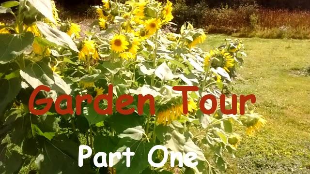Garden tour part 1