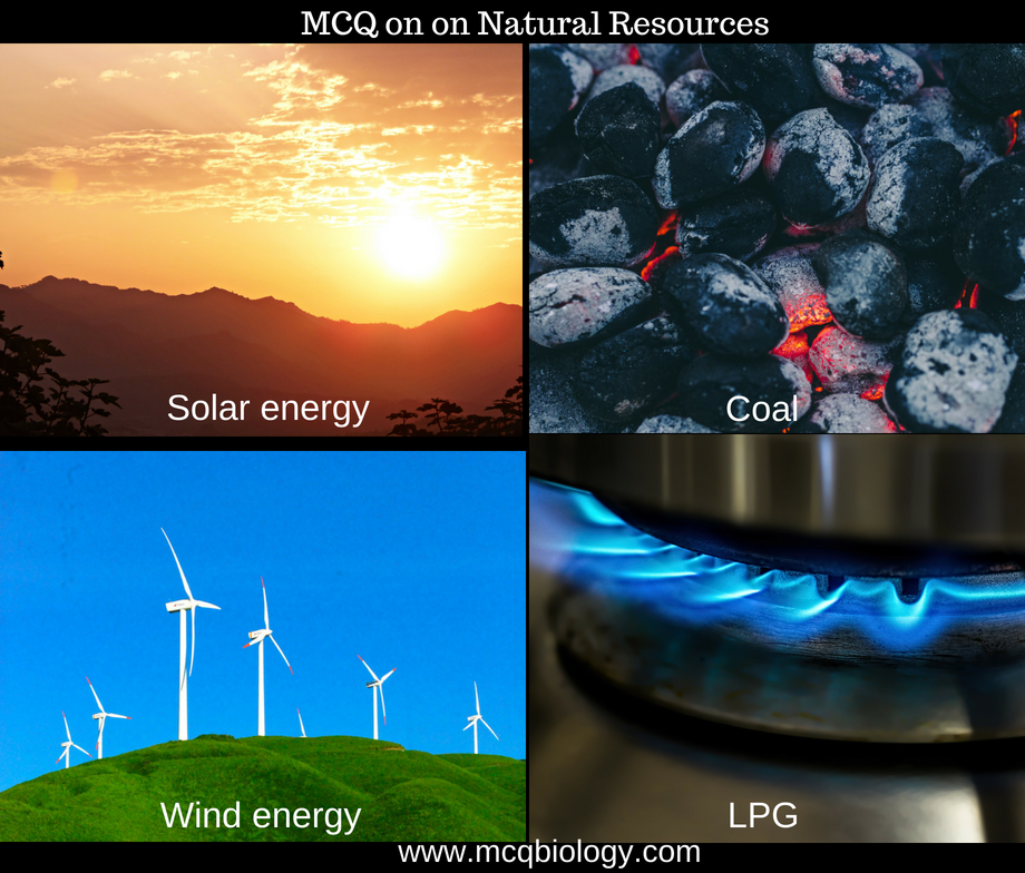 Multiple Choice Questions on Natural Resources